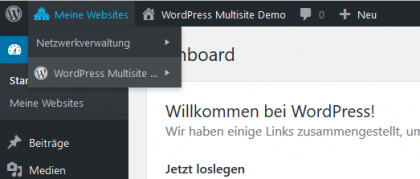 """<span class=""""entry-title-primary"""">WordPress Multisite</span> <span class=""""entry-subtitle"""">Mehrere WordPress Seiten über ein gemeinsames Backend verwalten</span>"""